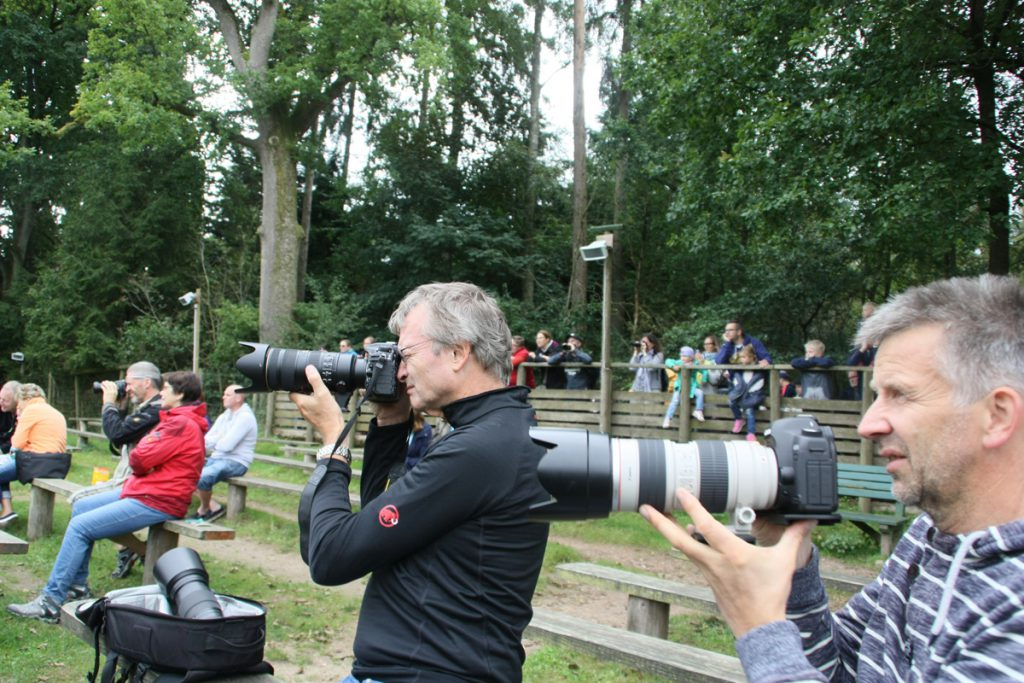 Wildtierpark Eekholt - Teleobjektiv