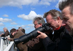 Fotoworkshop Speicherkoogsafaris mit Fotograf Stefan Carstensen
